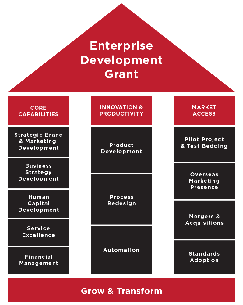 Enterprise Development Grant 3 Pillars Diagram